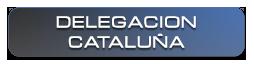 Dirección Delegación Cataluña Delsat International.